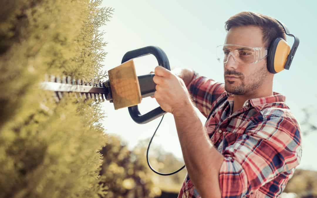 Top 10 Father's Day Gifts 2020 for Dads With a Green Thumb