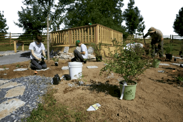 The Benefits of Urban Farming and Where to Start